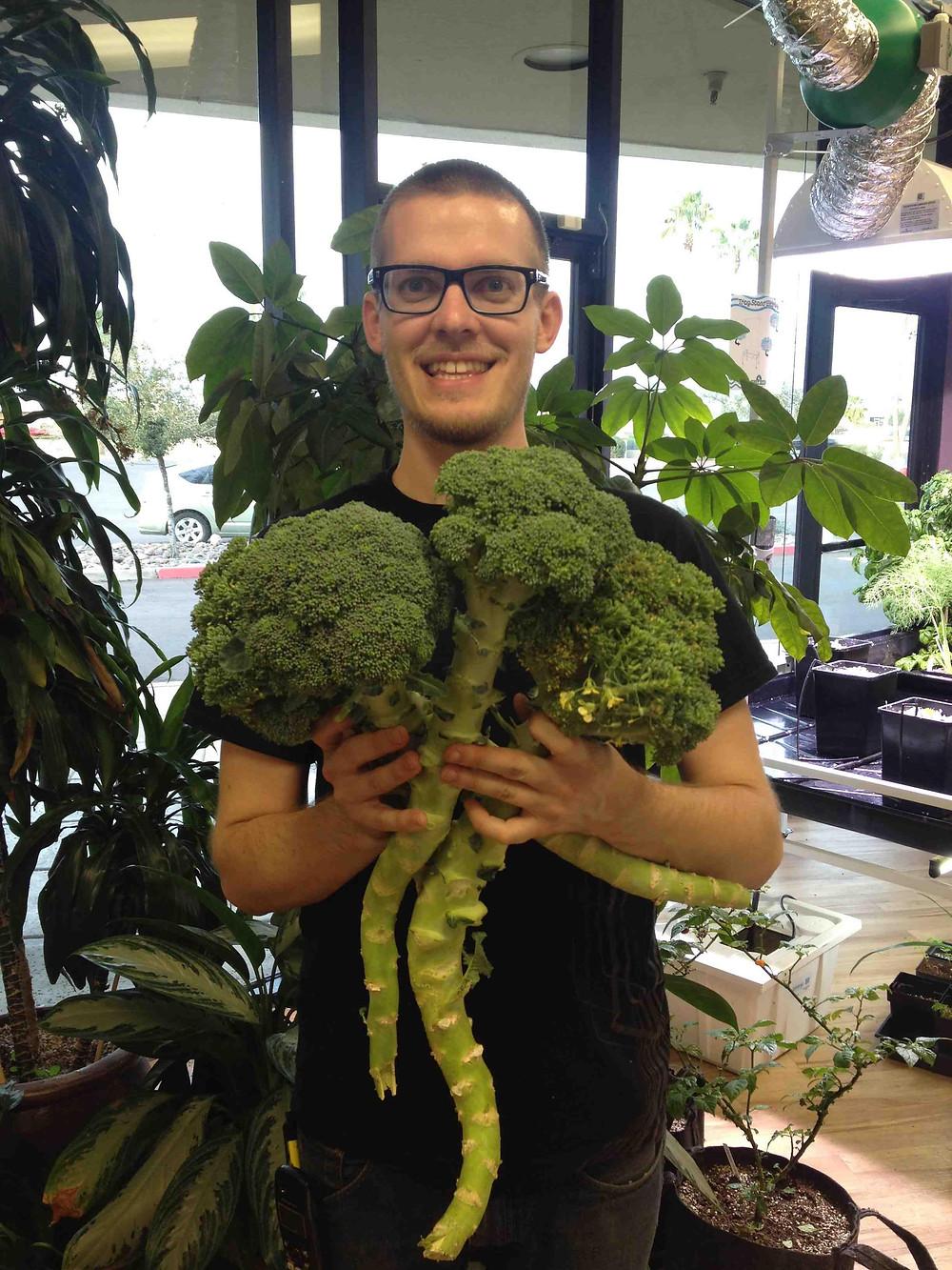 Outlaw Broccoli