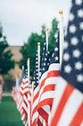 Flag 180_edited.jpg