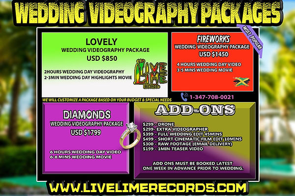 Jamaica Wedding Videographer.jpg