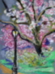 CPCherry BlossomsC2.JPG