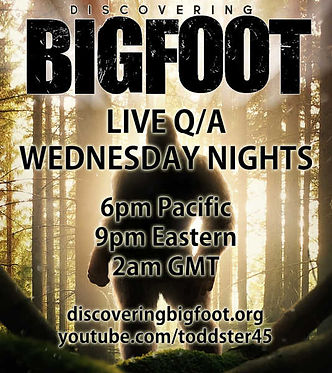 Bigfoot Live Stream Poster 600H.jpg