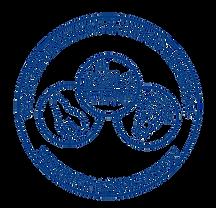 Blue Logo No Bg_edited.png
