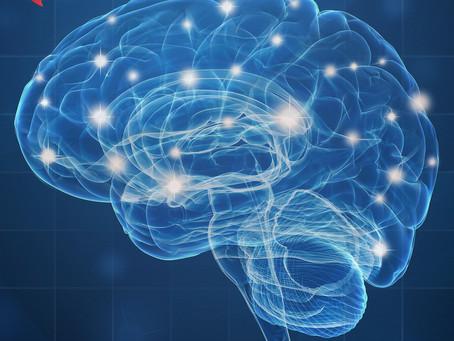 Como os alimentos altamente processados prejudicam a memória do cérebro em envelhecimento:
