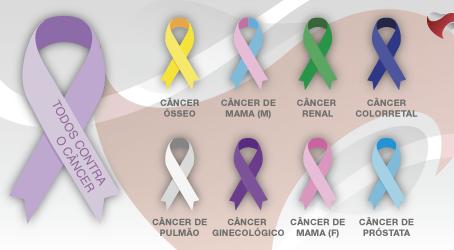 Como o ômega-3 inibe o crescimento do tumor em camundongos?