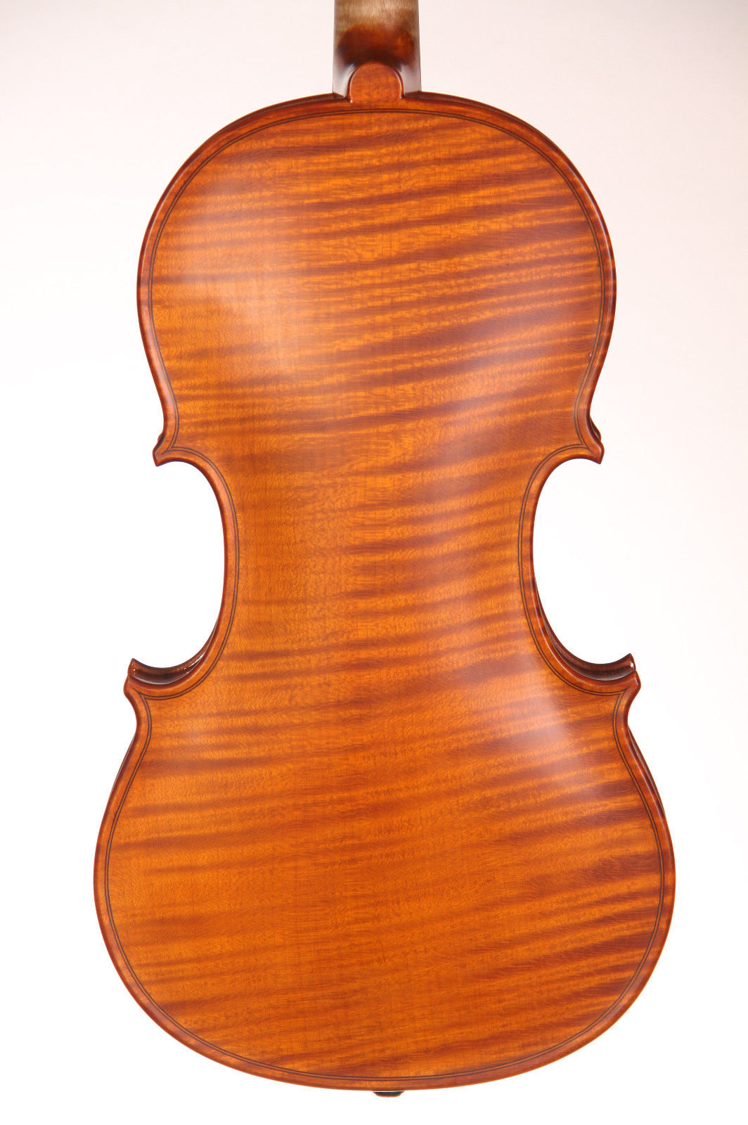 violin with the back from 1 piece