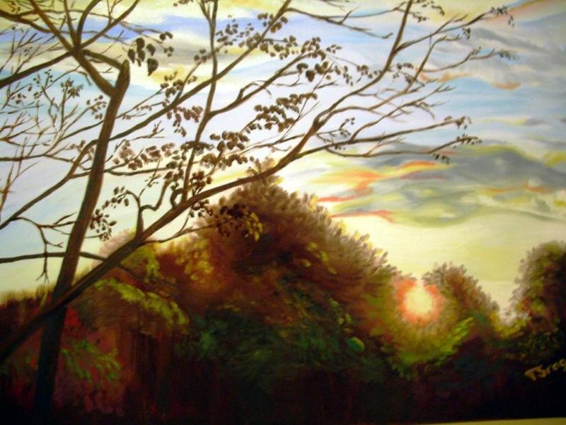 Sunsetinthetrees