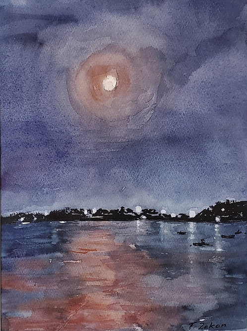 Zakon, Tamara  - Pink Moonlight in Can Tho, Vietnam