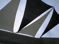 Blakc and White Sails