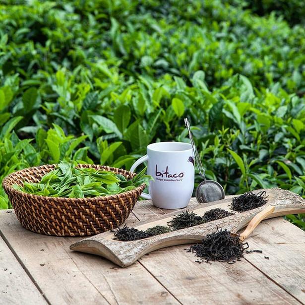 Bitaco Unique Colombian Tea