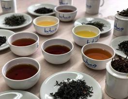 Bitaco Green Tea