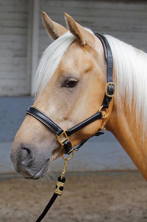 Harry's Horse - Licol en cuir noir passepoil or ou argent