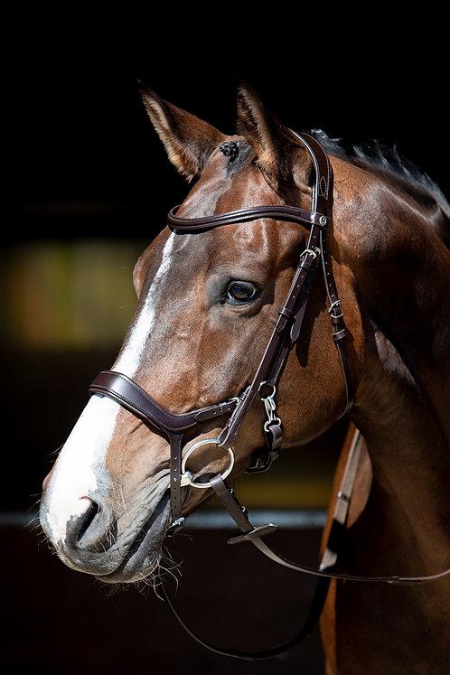 Harry's Horse - Bridon Release