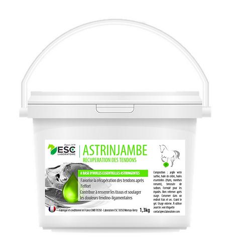 ESC Laboratoires - Astrinjambe - Argile enrichie en huiles essentielles