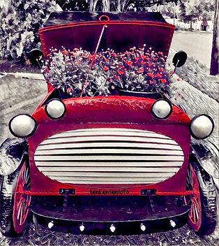 pretty car.JPG