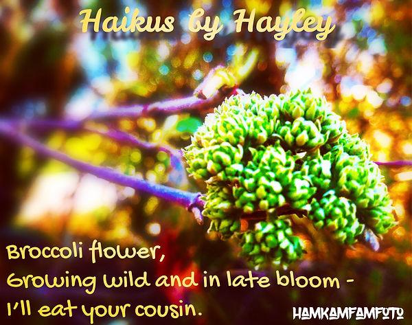 broccoli haiku.JPG