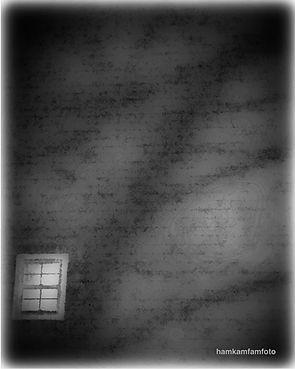 shadows.JPEG