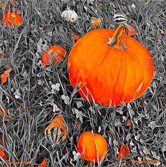 Pumpkin'd Up Kicks.jpeg