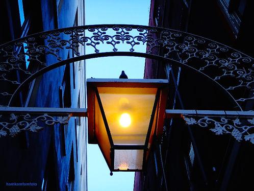 1 Bermuda lampJPG copy.jpg