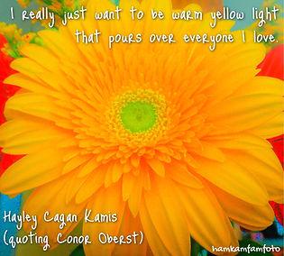 warm yellow light.JPG