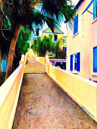 Bermuda Short-cut.JPG