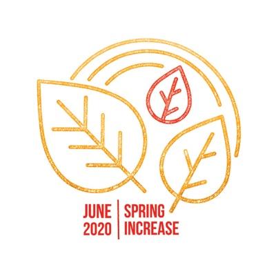 Spring Increase