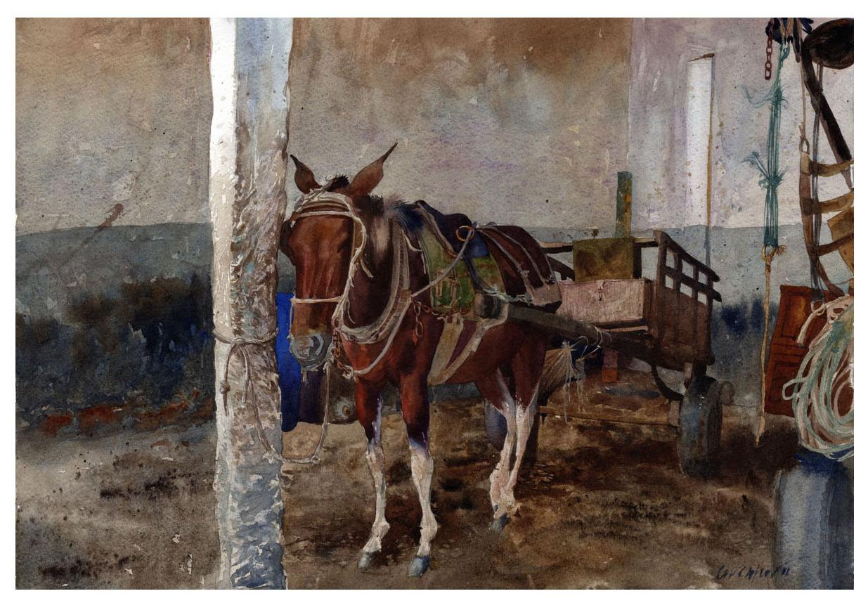Cavalo a espera