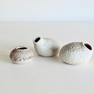 Forest Shell I, II & III