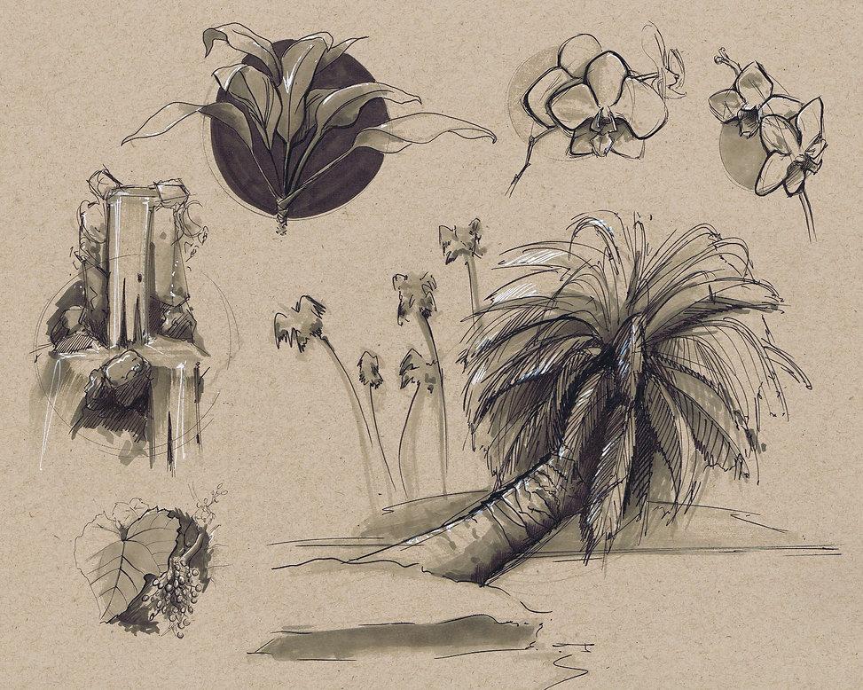 PLANTS1.jpg