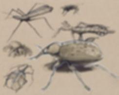bugs1.jpg