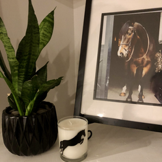 Horse Candle Displayed in home 2 .heic