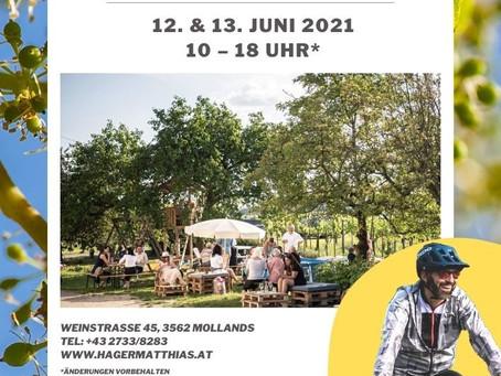 Der Kamptaler Weinfrühling 2021 findet statt!!!