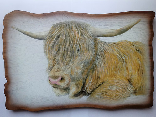 Haggisartz | Hamish the Highland Cow Wooden Plaque