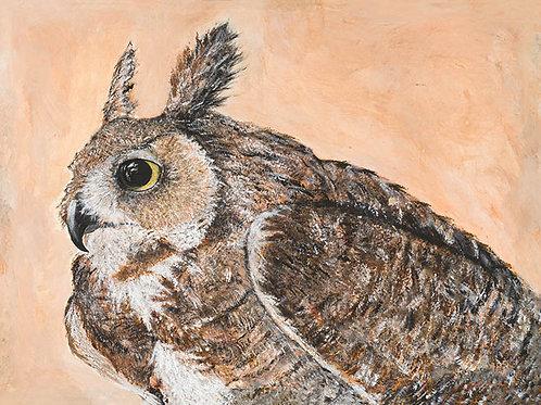 Craig McEwan Illustration | Great Horned Owl 16x20 Giclee Print