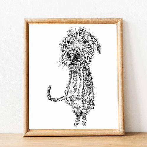Sarah Cox Artwork | Dog Art Prints