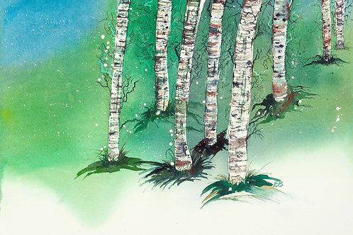 Emer Beattie Art | Summer Birch Trees Limited Edition Giclée Print