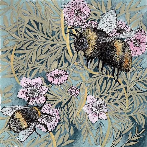 Between the Woods and the Sea | Queen Bee