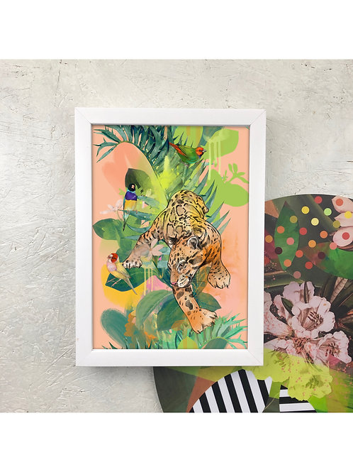 Diedododa | Cat Mad A3 Prints