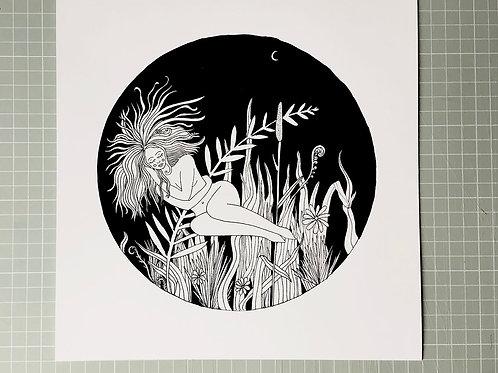 Acorn Print Studio | Giclee Prints