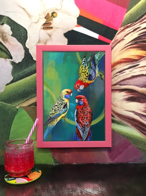 Diedododa | Animal Antics Giclee Fine Art Prints A3