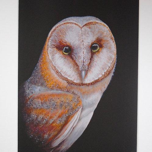Haggisartz | Barn Owl Print