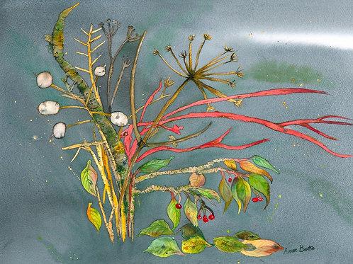 Emer Beattie Art | Winter Bouquet, Limited Edition Giclée Print