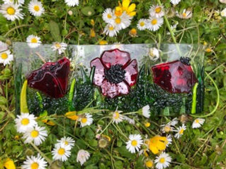 Glowing Glass | Poppies