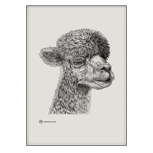 Rona Innes | Alpaca Tea Towel