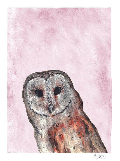 Craig McEwan Illustration   Barn Owl A4 Print