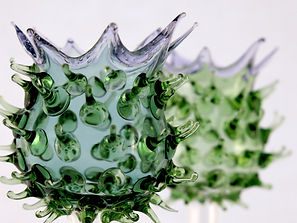 Thistle Agelos Glass