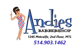 andies_logo.png