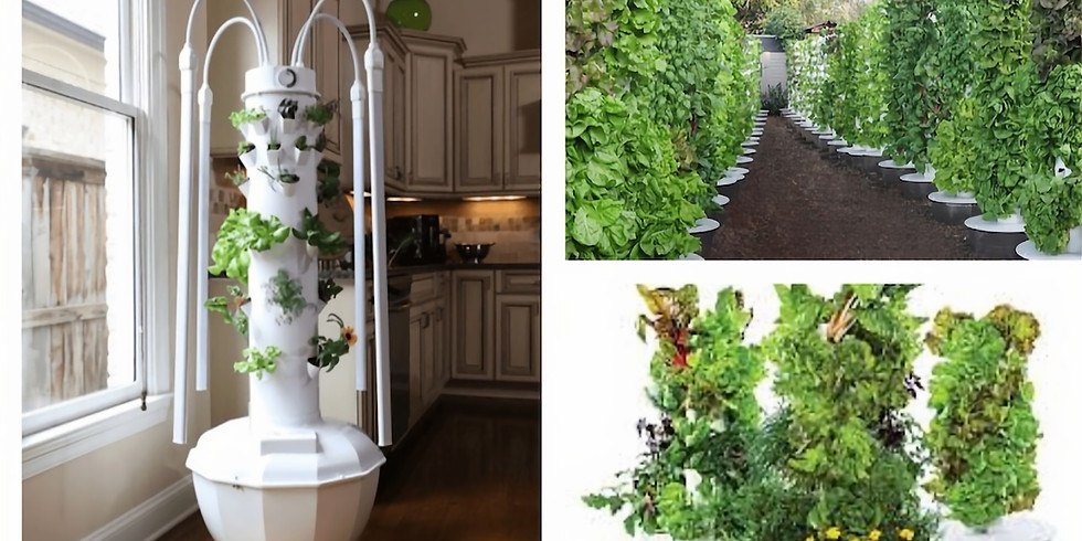 Learn How to Grow Your Own Food with Tower Garden