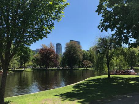 Blogging in Boston