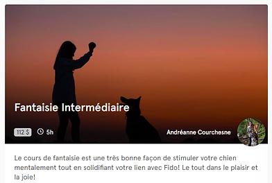 photo_fantaisie_Intermédiaire.png