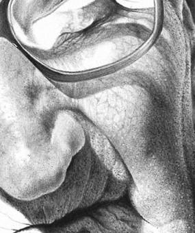 Tecnica delchiaroscuro iperrealista a matita.